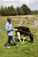 Future Farmer Schools