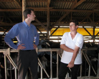 A representative from SICREDI Pioneira (left) meets with a farmer-member in the loafing shed for her heard of 80 cattle during a visit by WOCCU staff members.