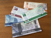 Tartu Credit Union's Veksel currency